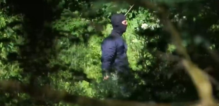 Violent Pushbacks Footage: Efficient Investigation into Use of Force by Police Necessary for the Protection of Human Rights and the Rule of Law
